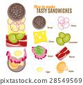 sandwich, burger, how 28549569