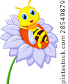 Little bee resting on the big flower 28549879