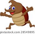 Cute rhinoceros beetle 28549895