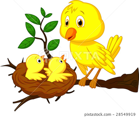 Mother and baby bird 28549919
