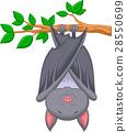 Cartoon bat sleeping 28550699