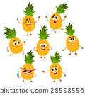 pineapple character vector 28558556