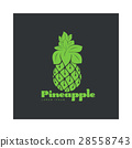 Two tone assymmetric graphic silhouette pineapple 28558743