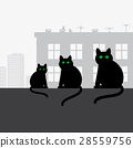 Family black cats sitting on the roof 28559756