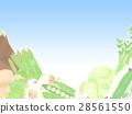 봄 야채 푸른 하늘 배경 일러스트 28561550