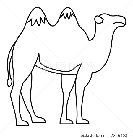 Camel icon, outline style 28564089