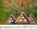白川乡 世界遗产 长满茅草的椽架屋顶 28573215
