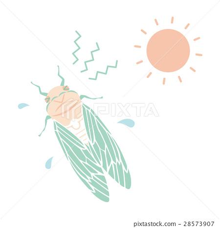 矢量 蝗蟲 蟬 28573907