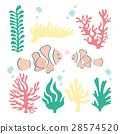 vector, vectors, anemone 28574520