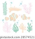 vector, vectors, anemone 28574521