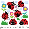 Stylized ladybugs theme set 1 28579100