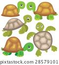 Stylized turtles theme image 1 28579101