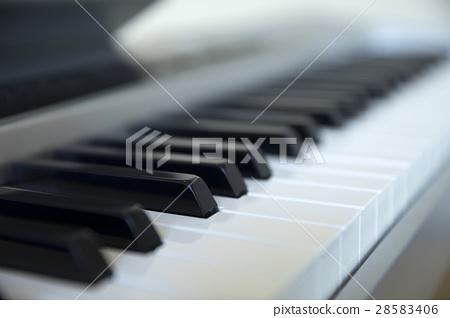 電子鋼琴 28583406