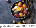 Brown colored easter eggs 28583955