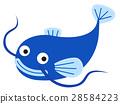 鯰魚 魚 矢量 28584223