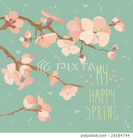 Card with spring flowers on tree branch 28584744