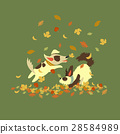 Funny dogs playing with autumn leaves 28584989