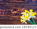 beautiful yellow narcissus on wooden background, 28589123