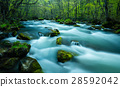청류의 흐름 28592042