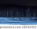 blue pond, aoiike, biei 28592402