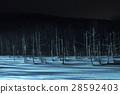 blue pond, aoiike, biei 28592403