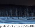 blue pond, aoiike, biei 28592404