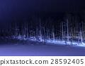 blue pond, aoiike, biei 28592405