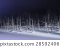 blue pond, aoiike, biei 28592406
