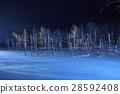 blue pond, aoiike, lit up 28592408