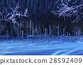 blue pond, aoiike, lit up 28592409