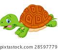 turtle cartoon running 28597779