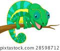 Cute chameleon cartoon 28598712