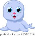seal, baby, cartoon 28598714