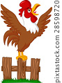 rooster, crowing, vector 28598720