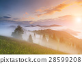 fog, mountain, mist 28599208