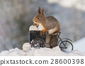 cycling with egg load 28600398