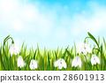green, spring, vector 28601913