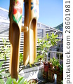 Bamboo wind chimes 28601981
