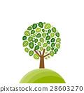 樹木 樹 木頭 28603270