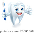 Tooth Mascot Character 28605860