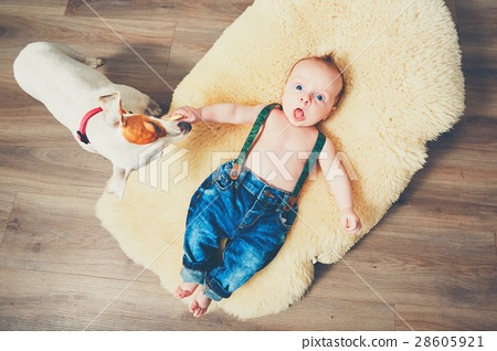 Little boy and dog at home 28605921