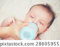 婴儿 宝宝 牛奶 28605955