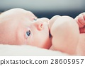 Baby with hand in mouth 28605957