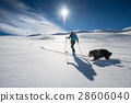 Girl makes ski mountaineering with his dog in a fairy-tale place 28606040