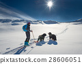 Lonely girl in the mountains with ski touring and two dogs 28606051