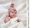 baby, bed, blanket 28612300