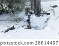 Winter arctic mountains sniper 28614497