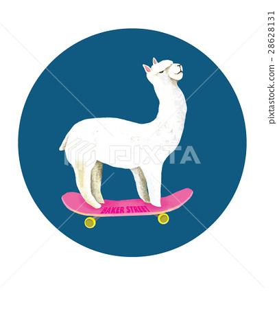 Skate board 28628131