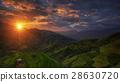 เอเชีย,ตะวันออก,เอเซีย 28630720