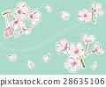 벚꽃 (그린) 28635106